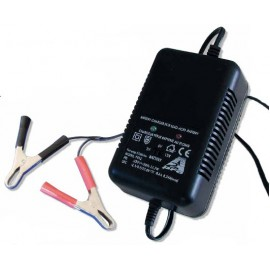 A2PRO Chargeur Plomb - Tension réglable 2V/6V/12V Pince croco